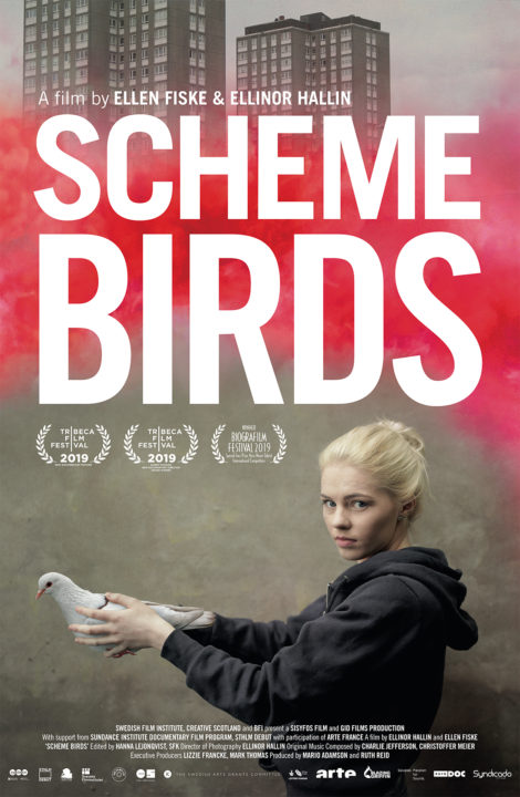 Scheme Birds – Nov. 7th